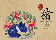 2019 Pig Chinese Horoscope Prediction