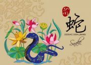 2019 Snake Chinese Horoscope Prediction